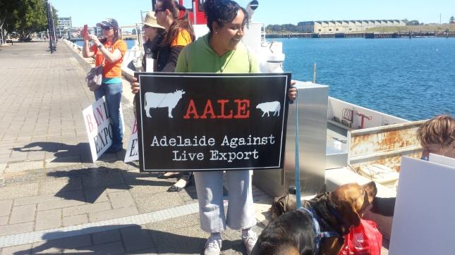 Protesta: Ban live exports.